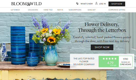 Bloom and Wild Homepage Screenshot