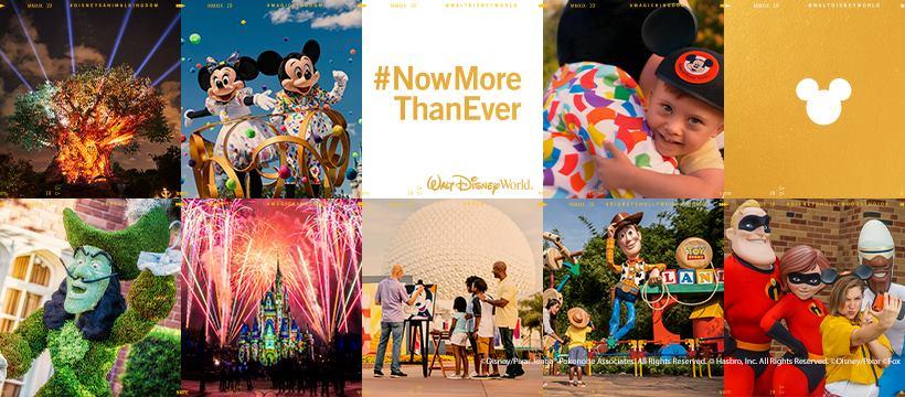 Disneyworld Resort Banner