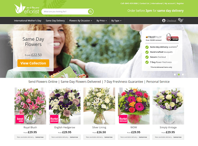 eFlorist Homepage Screenshot