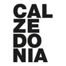 Calzedonia Square Logo