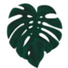 Pointless Plants Square Logo